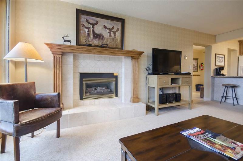 Bronze Tree Condominiums - BT305 - Image 1 - Steamboat Springs - rentals