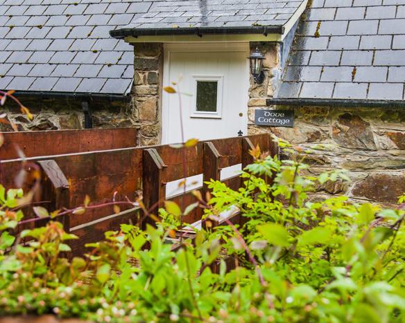 Dove Cottage, Gellifawr Cottages - Image 1 - Fishguard - rentals