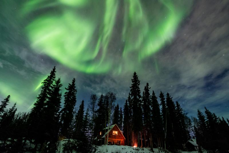 Northern Lights over Moose Walk Cabin. - Private, Waterfront Cabin with Aurora & Wildlife - Fairbanks - rentals