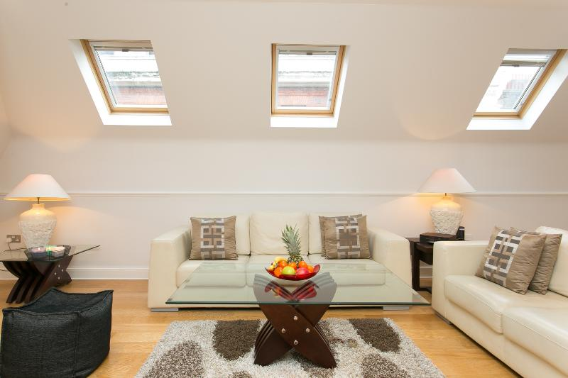 A remarkably spacious three-bedroom property in the heart of London - Image 1 - London - rentals