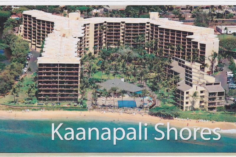 Kaanapali Shores Penthouse Condo Great Ocean View - Image 1 - Lahaina - rentals