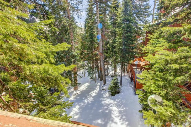 Spacious, remodeled home near the Giant Steps ski lift! - Image 1 - Brian Head - rentals