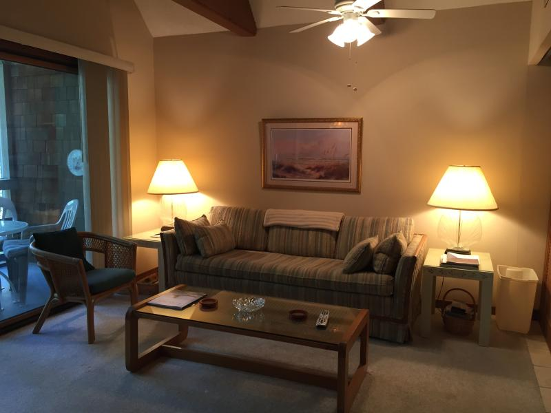 Living Room with vaulted ceiling - Seascape Villa at Kiawah, SC - Kiawah Island - rentals