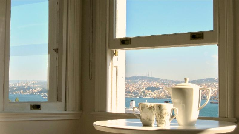 elegance and fantastic views in galata - Image 1 - Istanbul - rentals