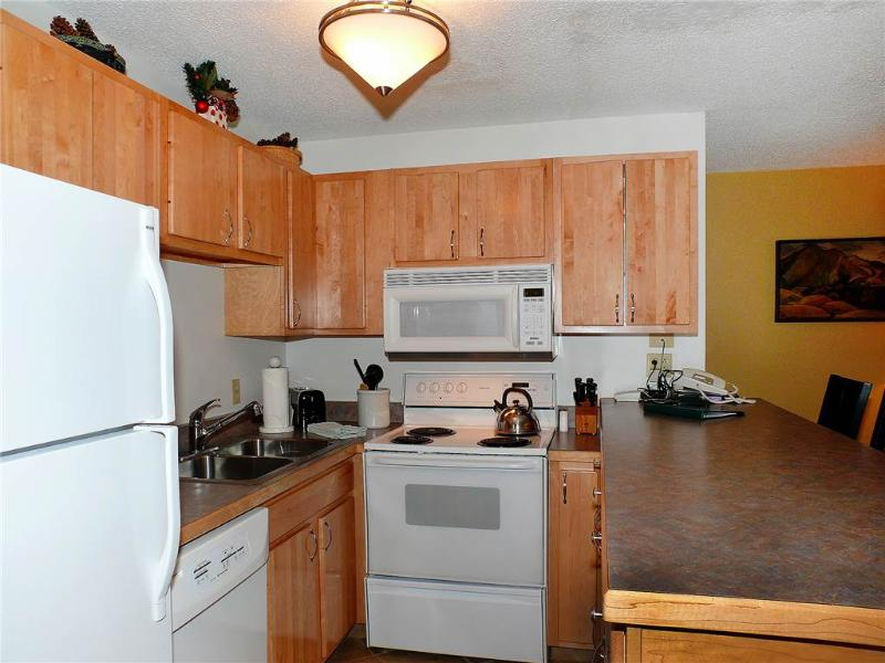 Storm Meadows I at Christie Base - SC230 - Image 1 - Steamboat Springs - rentals