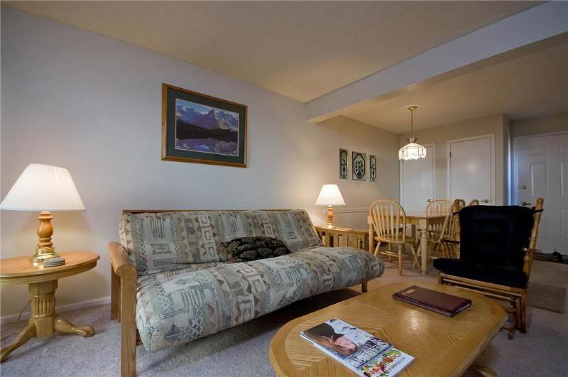 Shadow Run Condominiums - SHB19 - Image 1 - Steamboat Springs - rentals