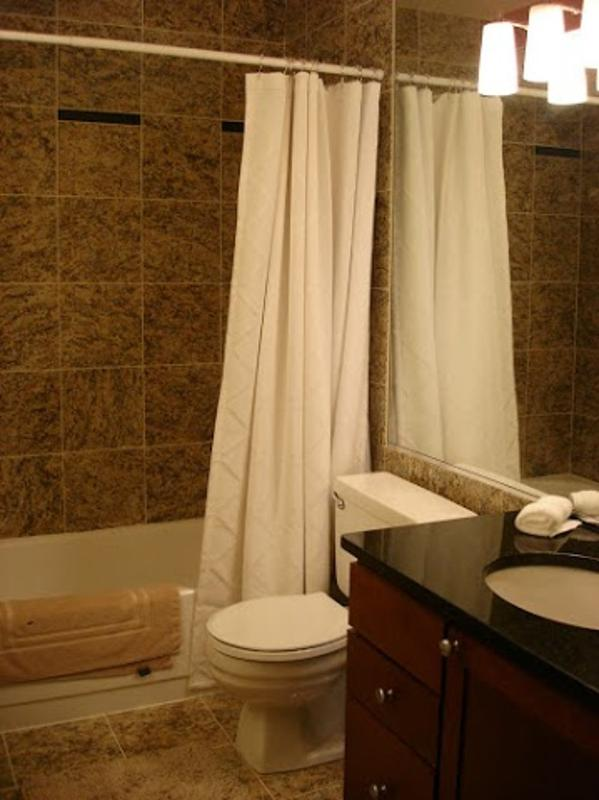 Furnished 2-Bedroom Condo at N Wabash Ave & E Huron St Chicago - Image 1 - Chicago - rentals