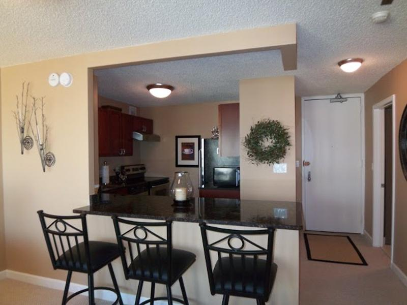 Lovely 1 Bedroom 1 Bathroom Condo in Chicago - Fully Carpeted - Image 1 - Chicago - rentals