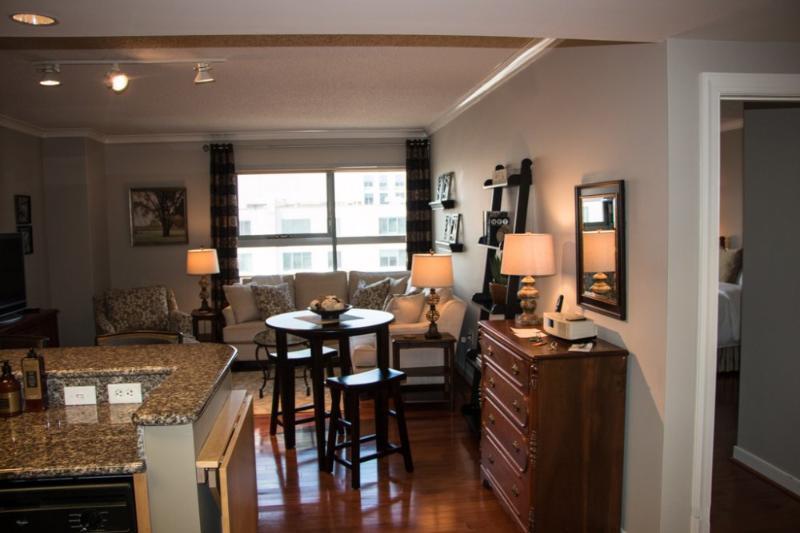 LUXURIOUS AND SPACIOUS 2 BEDROOM APARTMENT IN WASHINGTON - Image 1 - Washington DC - rentals