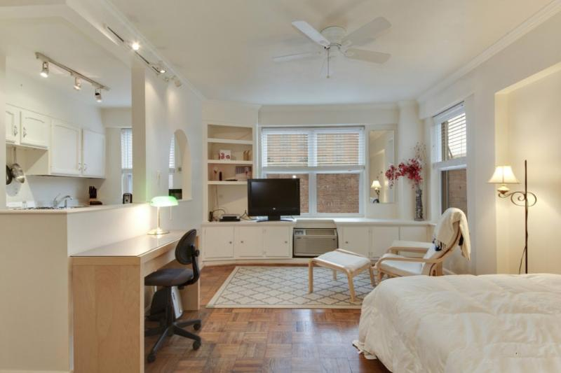 Clean and Charming Studio Condo in DC - Shared Roof Deck with Views - Image 1 - Washington DC - rentals