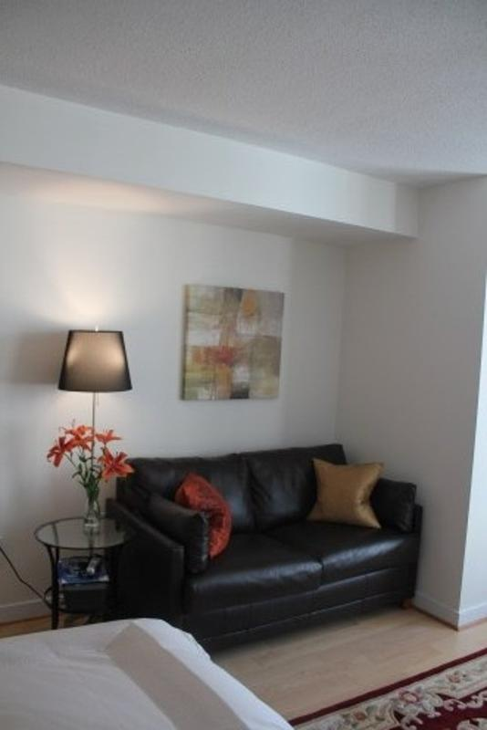 Bright and Beautiful Studio Apartment in Washington - Image 1 - Washington DC - rentals