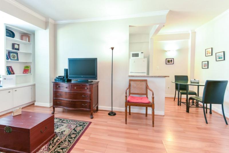SPACIOUS AND FURNISHED STUDIO CONDO IN WASHINGTON - Image 1 - Washington DC - rentals