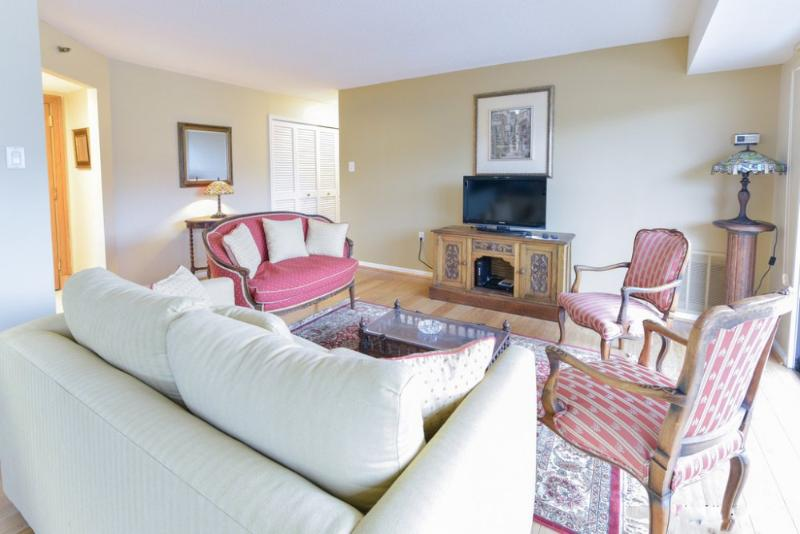 Sunny and Bright 1 Bedroom Condo in Arlington - Image 1 - Arlington - rentals