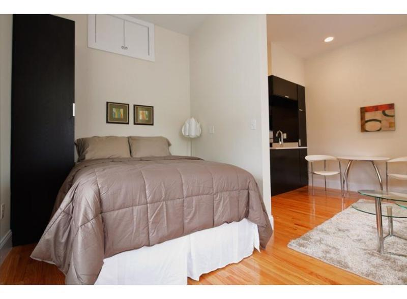 SPACIOUS, CLEAN AND LIGHT-FILLED STUDIO APARTMENT - Image 1 - Boston - rentals