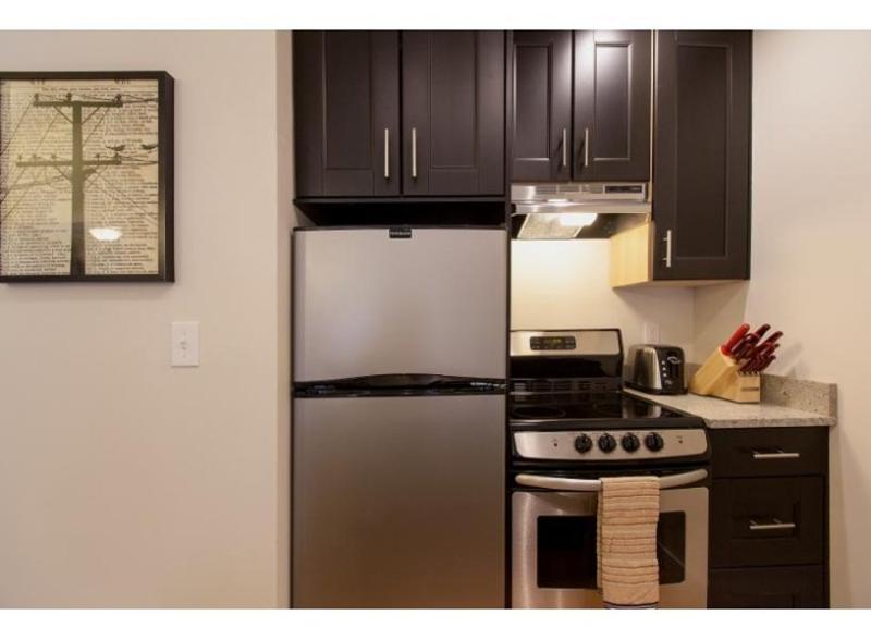 COZY, CLEAN AND SPACIOUS 1 BEDROOM, 1 BATHROOM APARTMENT - Image 1 - Boston - rentals