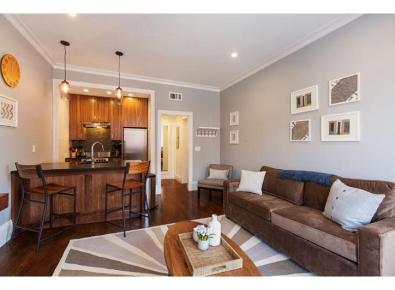 ELEGANT, SPACIOUS AND RELAXING 1 BEDROOM, 1 BATHROOM APARTMENT - Image 1 - Boston - rentals