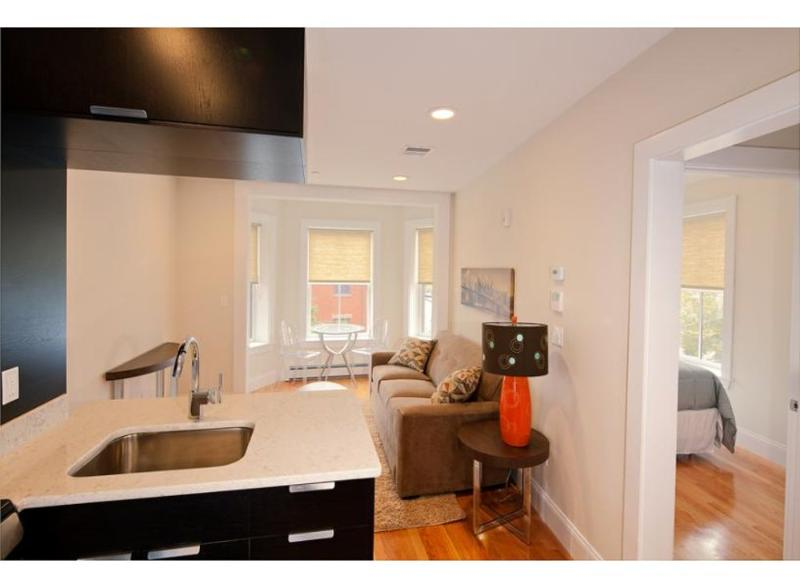 STUNNING AND SPACIOUS 1 BEDROOM, 1 BATHROOM APARTMENT - Image 1 - Boston - rentals