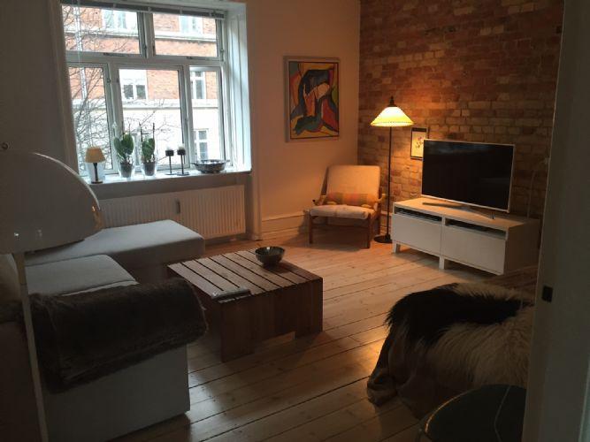 Aeroevej Apartment - Charming Copenhagen apartment near Frederiksberg garden - Copenhagen - rentals