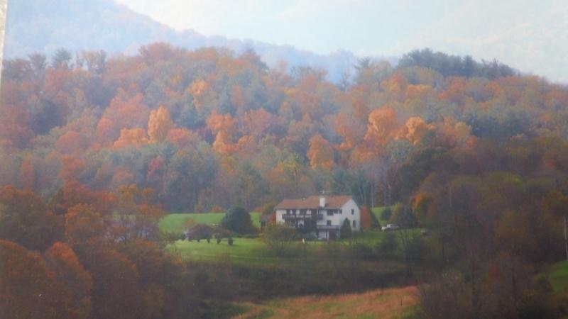 ~Brittany's Mountain Retreat~ located amidst the blue-ridge mountains ~12 miles NW of Asheville, NC - ~Brittany's Mountain Retreat~ near Asheville, NC - Leicester - rentals