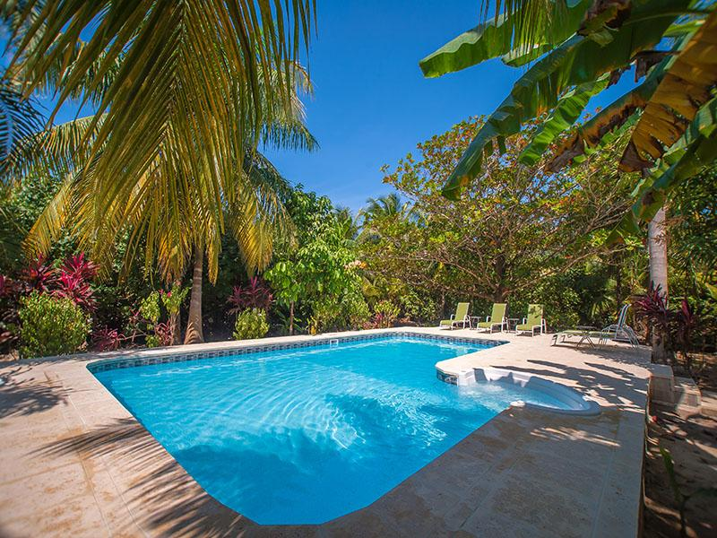 Beautiful private pool - Tropical Garden Villa - 300' From Beach - Sleeps 6 - Roatan - rentals