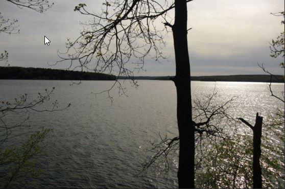 Lake from House - Lake Wallenpaupack lakefront, 3BR, 2 bath, dock - Hawley - rentals