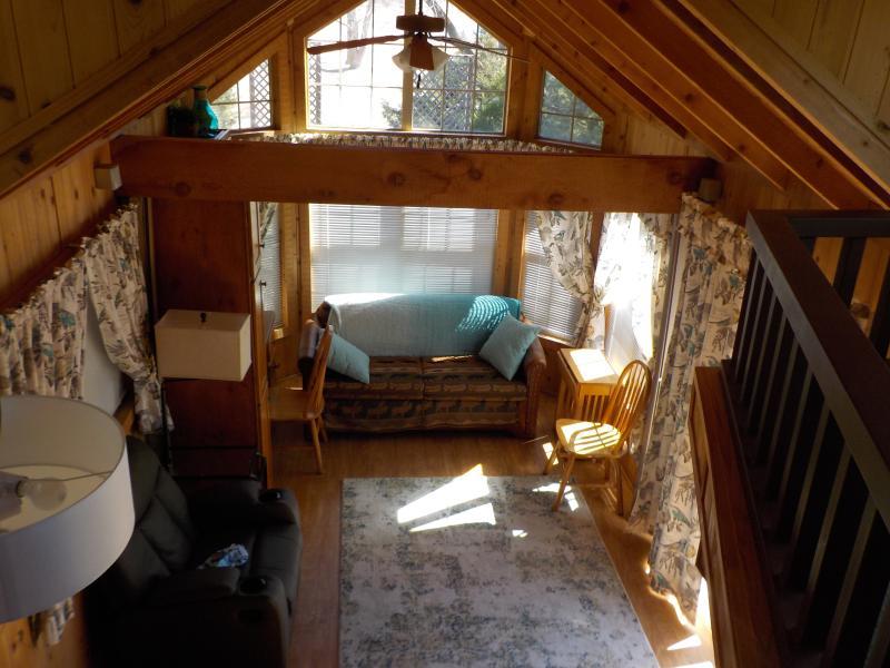 Living Room (taken from loft) - Little Lauer Lake Cabin -- Great Country Setting - Kearney - rentals