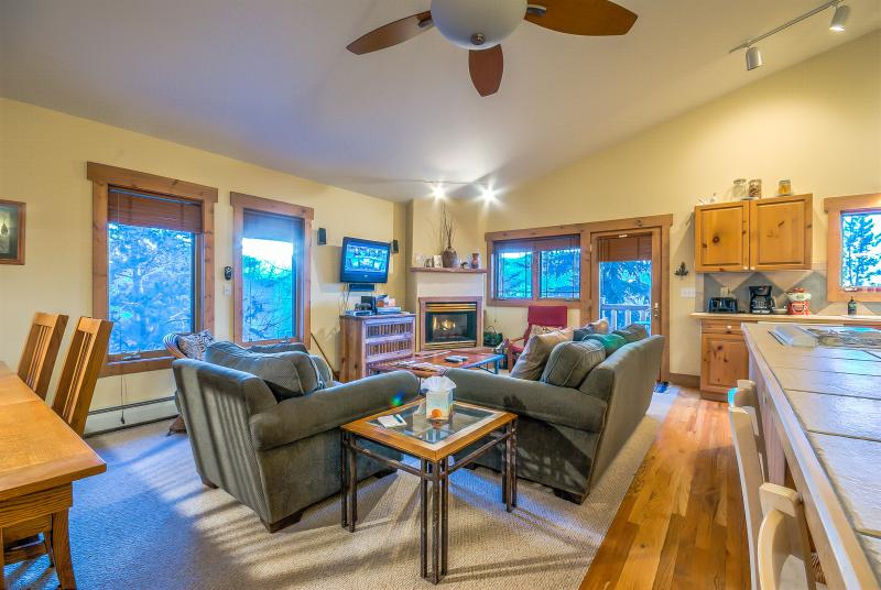 Fantastic Townhome - Image 1 - Steamboat Springs - rentals