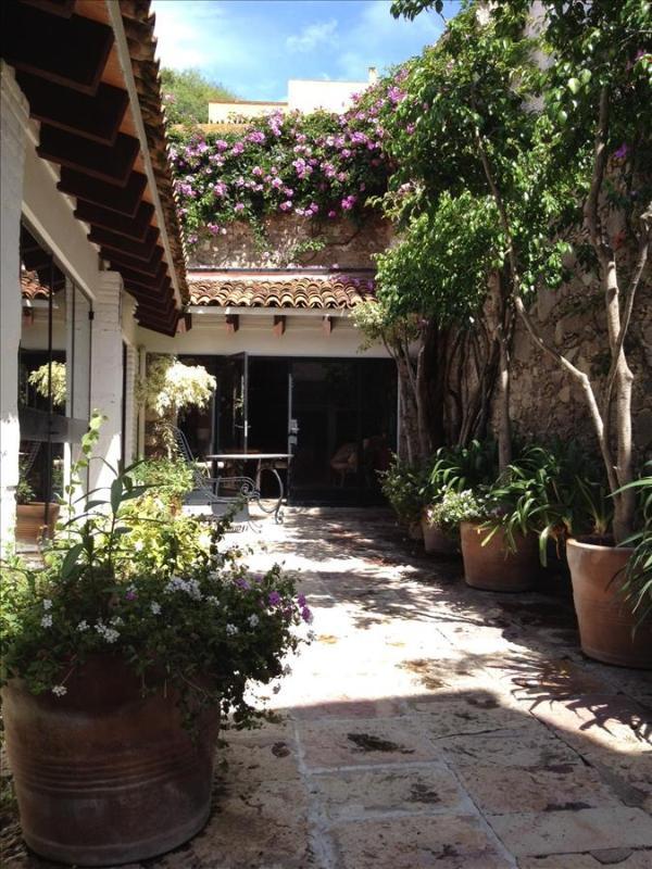 Casa de la Viña - Image 1 - San Miguel de Allende - rentals