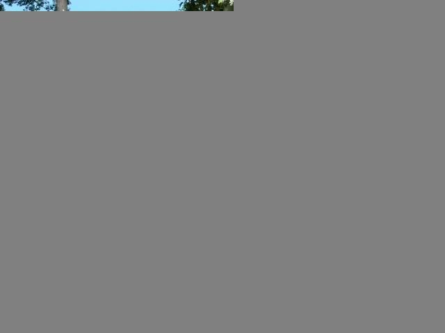 Huron Calling - Image 1 - Tawas City - rentals