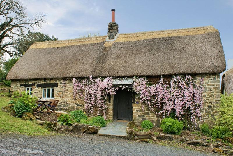 The Garden Cottage - Image 1 - Belstone - rentals