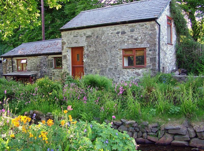 Homer Barn - Image 1 - Mary Tavy - rentals