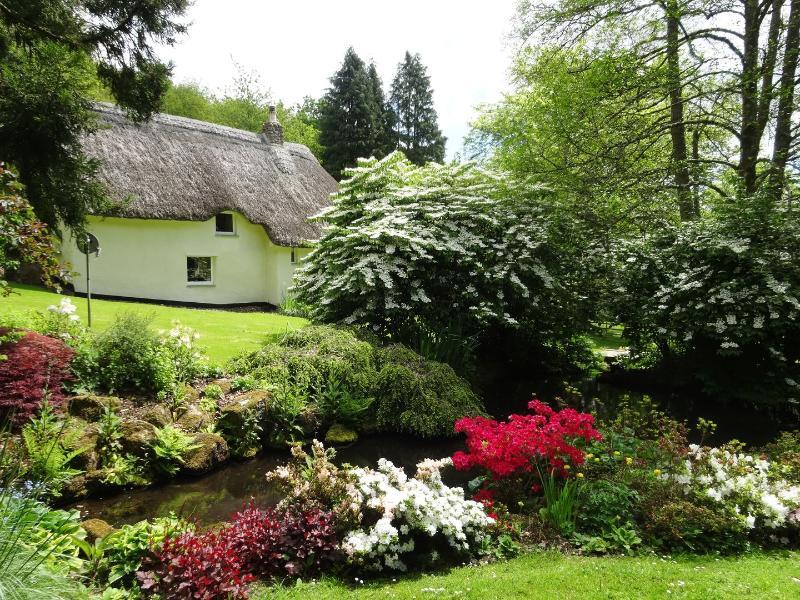 Gibhouse - Image 1 - Drewsteignton - rentals