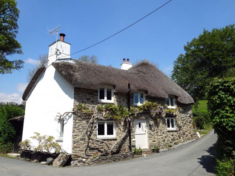 Cullaford Cottage - Image 1 - Holne - rentals