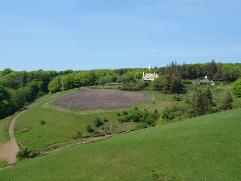 Lillycombe - Image 1 - Oare - rentals