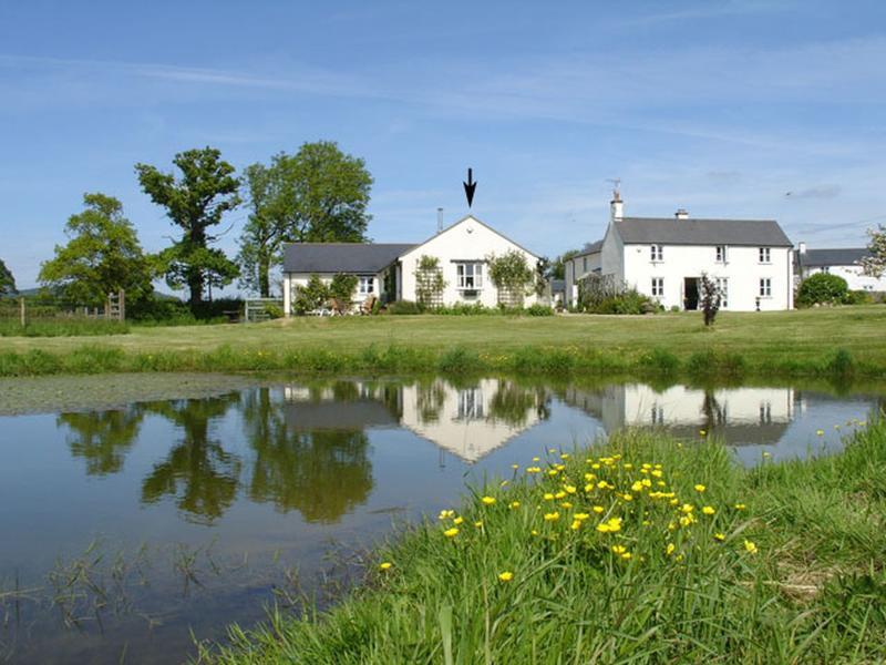 Dairy Cottage - Image 1 - Bridport - rentals
