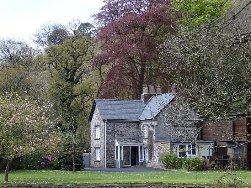 Lamellen Lodge - Image 1 - Bodmin - rentals