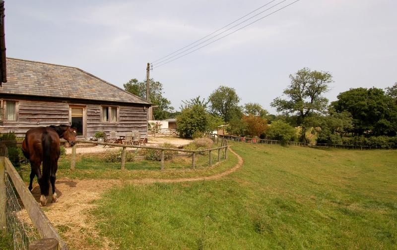 The Little Granary - Image 1 - Damerham - rentals