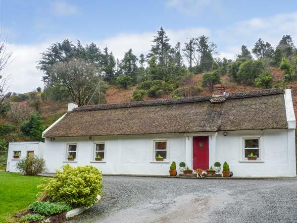 THE THATCH, all ground floor, thatched, open fires, parking, garden, in Tipperary, Ref 932616 - Image 1 - Tipperary - rentals