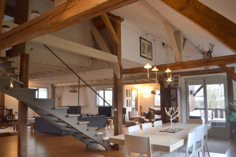 Large modern and stylish open plan living  and  dining area - Luxury 16c. Saw Mill, Talloires, Lake Annecy - Talloires - rentals