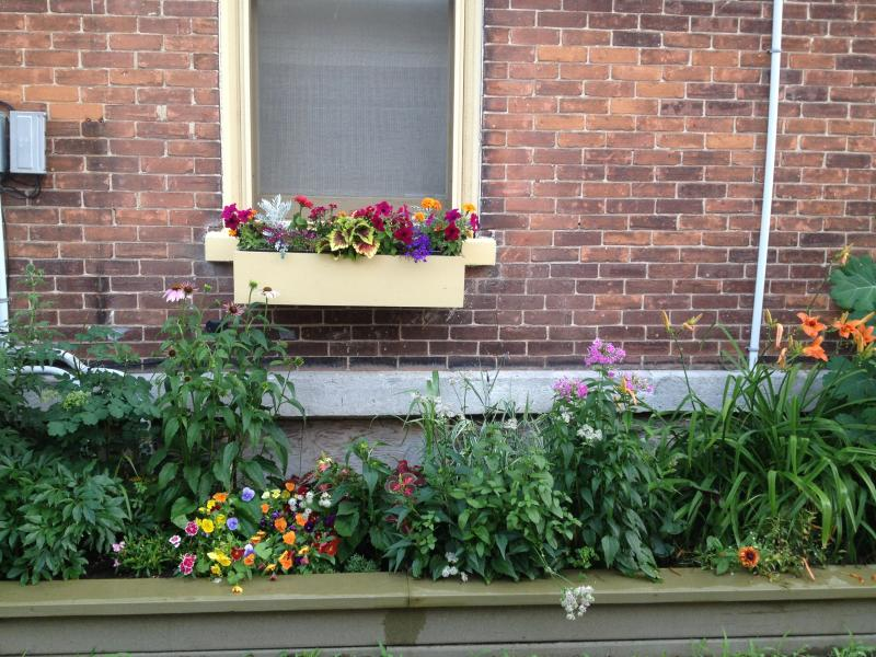 Gardens of Loyalist Lofts - Loyalist Lofts  3 Large furnished apartments - Picton - rentals