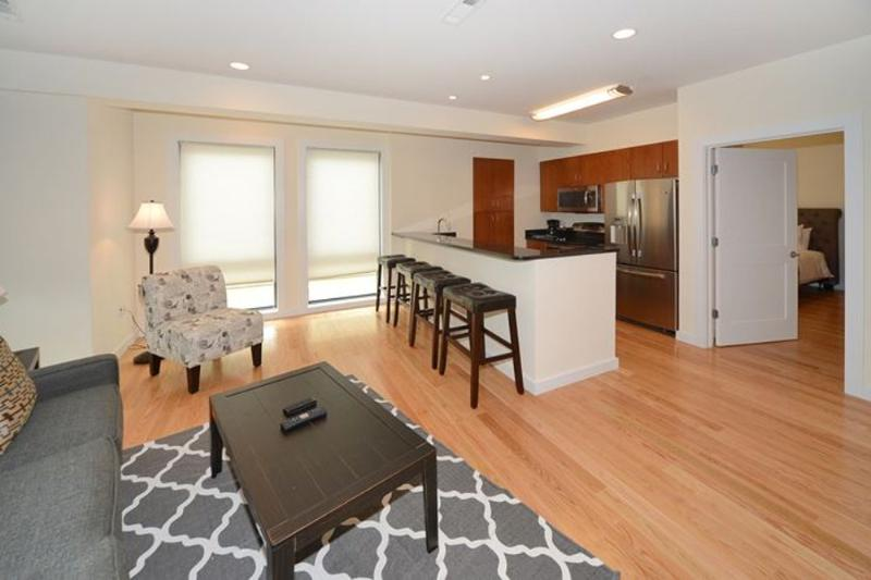 Stunning and Extravagant 2 Bedroom Apartment in Boston - Image 1 - Boston - rentals