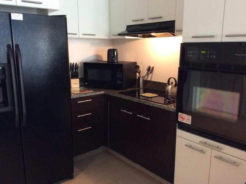 Modern Cambridge Fully Furnished Apartment - 2 Bedrooms and 2 Bathrooms - Image 1 - Cambridge - rentals