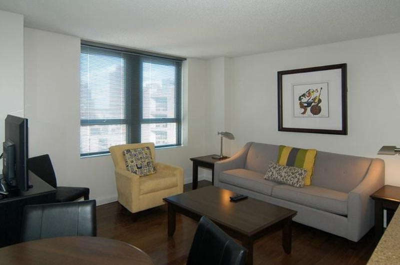Bright and Lovely 1 Bedroom, 1 Bathroom Apartment in Downtown Boston - Nice Neighborhood - Image 1 - Boston - rentals