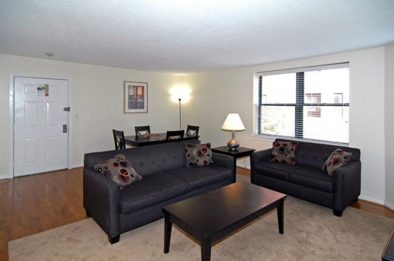 Charming and Beautiful 2 Bedroom 1 Bathroom Apartment in Boston - Image 1 - Boston - rentals