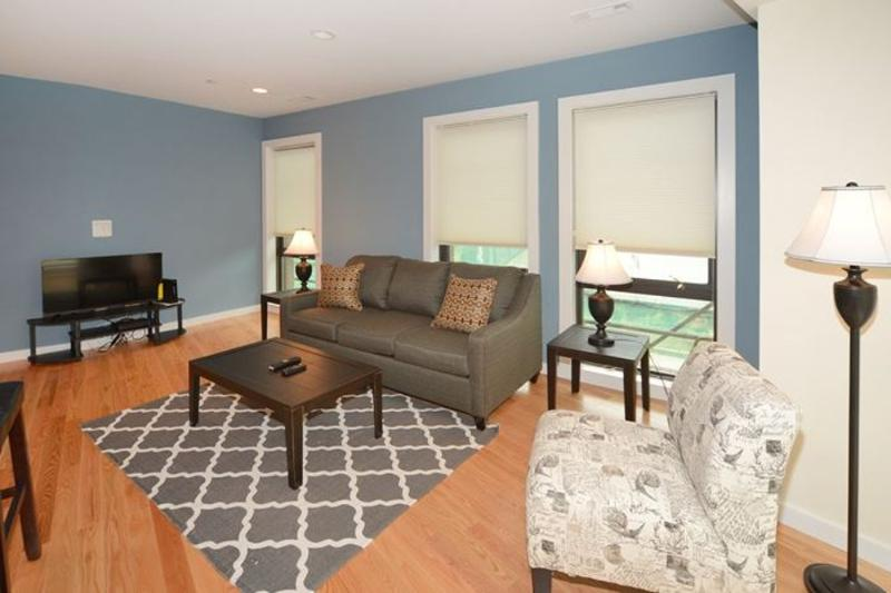 Stunning 1 Bedroom, 1 Bathroom Apartment in Boston - Image 1 - Boston - rentals
