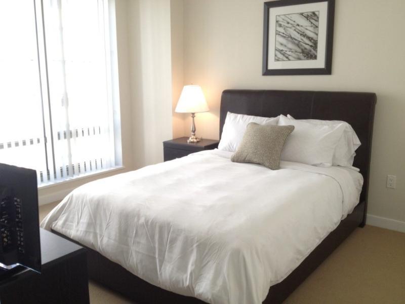 CHARMING FURNISHED 1 BEDROOM 1 BATRHOOM APARMTENT - Image 1 - Boston - rentals