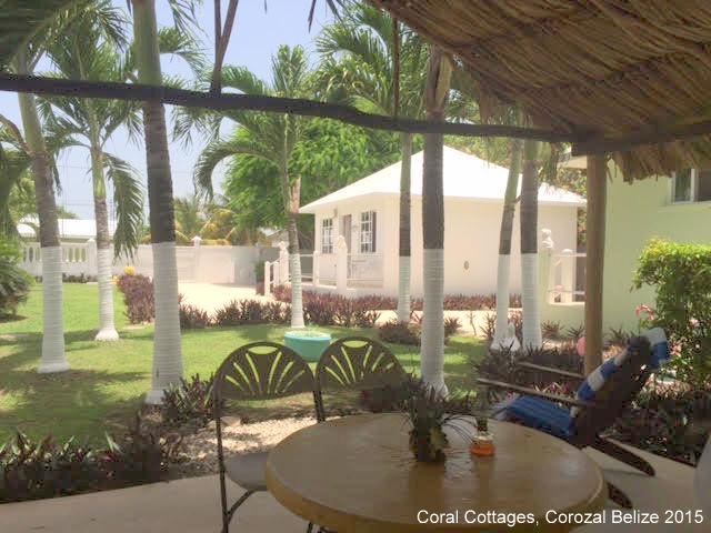 view from the Cottages exclusive guests palapa, as of February 2017 - Private Cottage in Corozal Town - Corozal Town - rentals