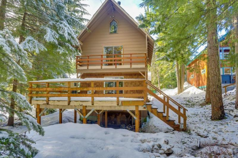 Dog-friendly Mt. Hood chalet w/wood fireplace & deck near Summit Ski Area - Image 1 - Government Camp - rentals