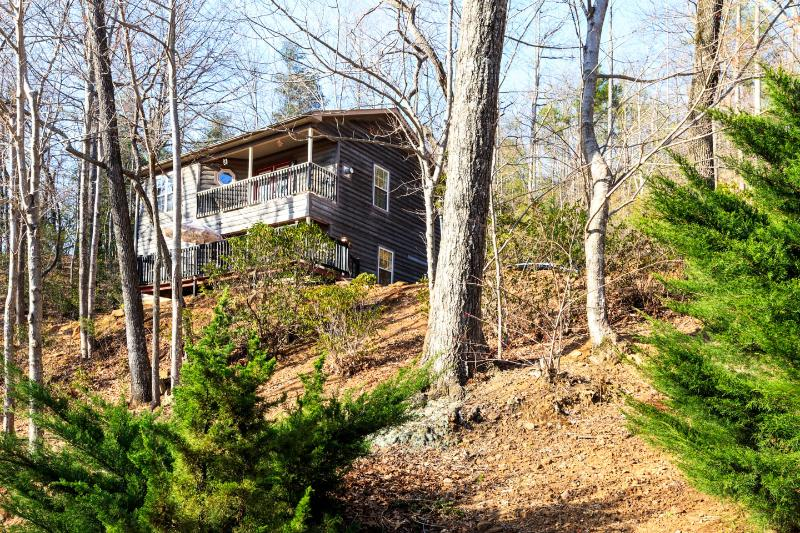 Mountain Reatreat - Image 1 - Tryon - rentals