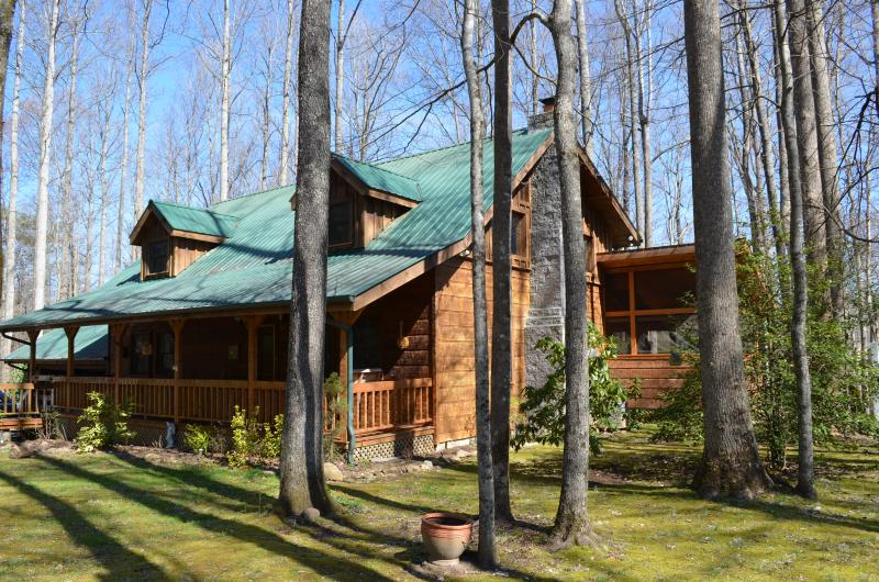 Welcome to Three Little Birds! - Three Little Birds Cabin - most popular cabin in area & over the top amenities - Cosby - rentals